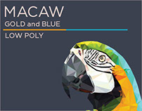 Macaw - Gold and blue ( Low poly )