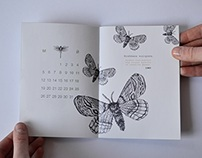 Calendar / Brochure with insects