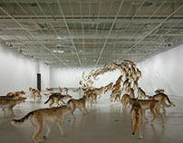 "Hypebeast | Cai Guo-Qiang ""The Ninth Wave"" Exhibition"
