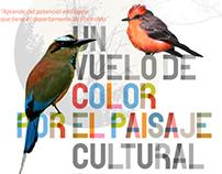 Un vuelo de color-EAFIT Pereira