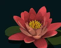 Flor de lotto