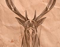 Deer Head,