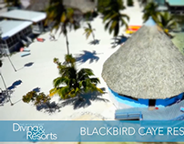 World's Best Diving and Resorts: Blackbird Caye