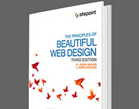 Principles of Beautiful Web Design 3rd Edition