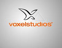 Opening VoxelStudios 2016