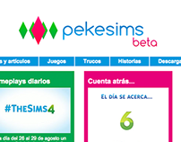 Web Template redesign for Pekesims