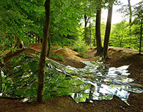 Installation: mirrors in forest