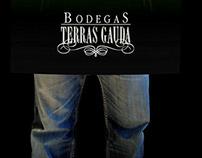 Terras Gauda poster
