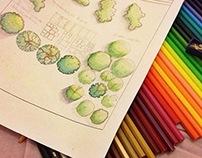 Estudo Paisagismo (Em progresso)