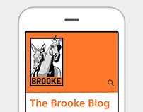 The Brooke - UX Design