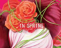 In Spring ...