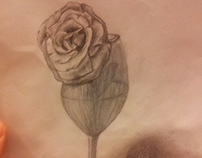 rose with wine glass, pencil art