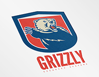 Grizzly Security System Logo