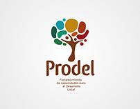 PRODEL. Proyecto para el fortalecimiento de capacidades