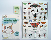 Minibeasts in the air