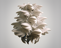 Layered Paper Shells