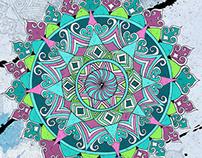 花圆——色彩color