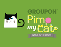 Groupon Pimp My Cat