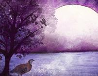 Chakor and the Moon ( Amar Chitra Katha )