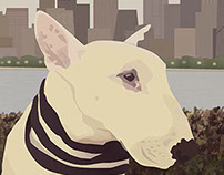 Pet Portrait Illustrations