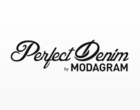 Perfect Denim for Modagram-Page Design