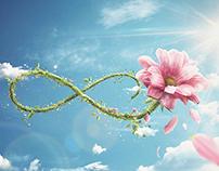 """LAN - """"Flower"""""""