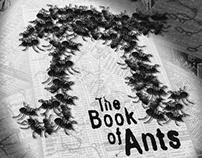 Pi-The Book of Ants