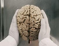 Neuroanatomy Series Trailer, UBC Faculty of Medicine