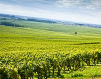 Bourgogne | 2014 (part2)