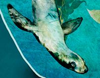 Marine Conservation Poster #1
