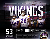 Minnesota Vikings Infographic 2
