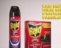 Raid - Commercial