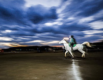 Horse endurance race