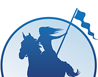 Paladin Funding Logo