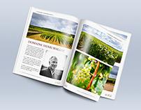 Magazine 1 - Bourgogne