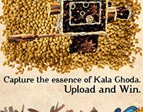Spice Art Campaign - Indus Pride