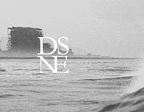 DSNE Logo