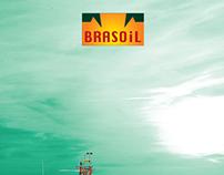 RIO OIL & GAS 2012 - Brasoil Corp