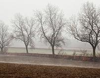 Landscapes - 16 x 9 - 6 Digital Crops