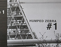 Humped Zebra #1 - Photozine
