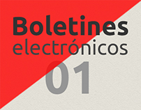 Boletines Electrónicos 01