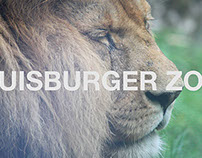 Duisburger Zoo, Film
