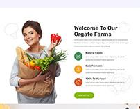 Orgafe - Organic Food WordPress Theme