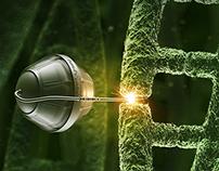 Ferro Folgamma - DNA