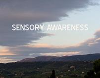 Sensory Awareness Process Book