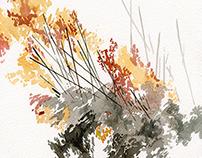 Landscape Resets II