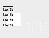Level 6ix