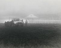 Horses or pickup truck