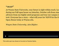 :30 Radio Spots Wayne State University