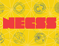 NECSS 2014 / Concept & Implementation